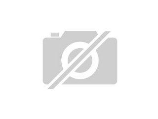 Golden Retriever Mix Welpe Aus Ukraine Strassenhund Sehr Helle